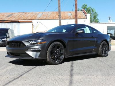 2019 Ford Mustang EcoBoost (Magnetic Metallic)