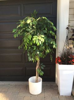 Faux Tree Just under 6ft tall used on back patio last year stored inside over winter GUC need rock in base to hold from tipping
