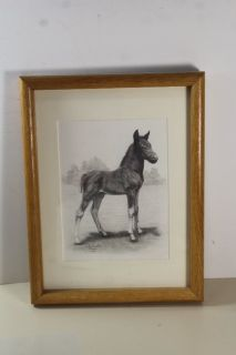 PAYSON ARTIST A. F. LINCOLN O'DONNAL 1983 HORSE COLT DRAWING