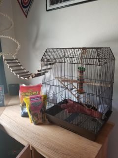 Bird cage, food and toys