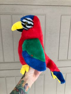 Ty parrot buddy