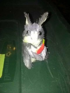Straw rabbit standing with carrot nwt