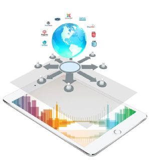 Choose the Best Web Design Company in Port Chester