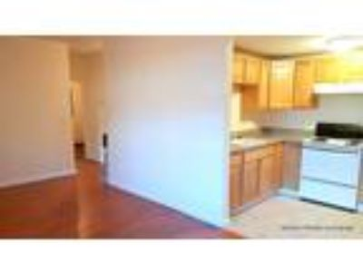 New Listing! Renovated Two BR in East Somerville W Heat Incl! Cat OK! June 15
