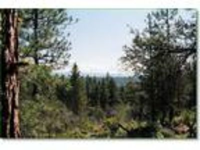 Southern Oregon Woods, 1.38 Acres, Views, Seculded