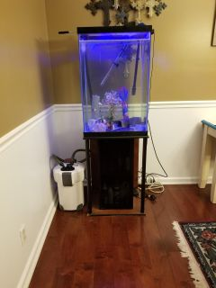 Upright fish tank and stand.