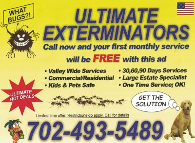 Pest Control Valley Wide