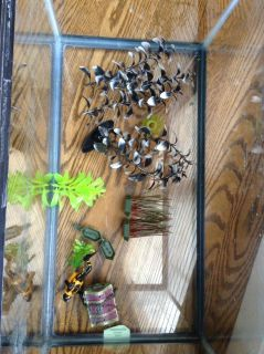 Fish tank with plants, a scuba diver with a chest of jewels that will open and shut