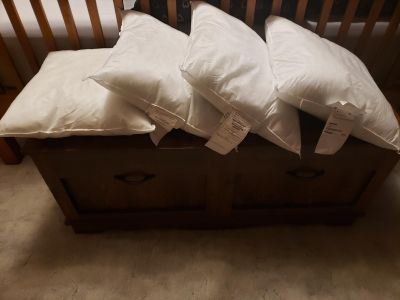 4 pillow inserts