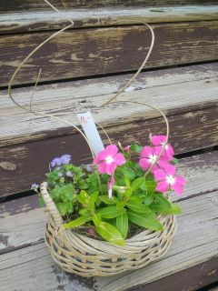 Planted annual basket