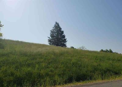 Lot 128 Tanzanite Trl New Tazewell, 1.17 acre cleared