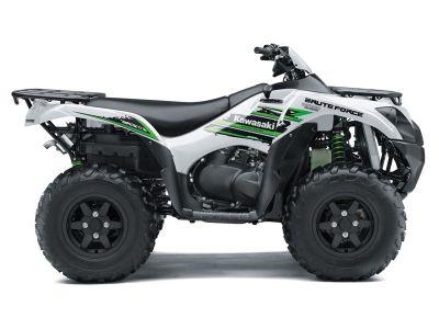 2018 Kawasaki Brute Force 750 4x4i EPS Sport-Utility ATVs Bessemer, AL