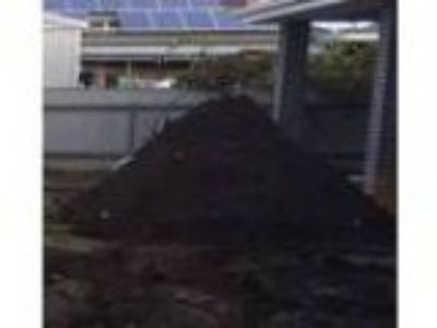 Pile of good clean dirt for free pickup