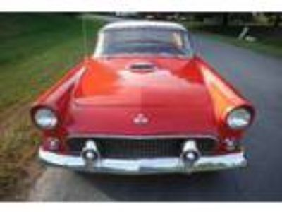 1955 Ford Thunderbird Convertible 292 Roadster