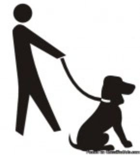 Dog Training - Mesquite and Forney