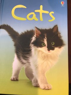 Book: Cats