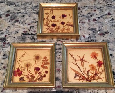 Small vintage pressed flower pictures