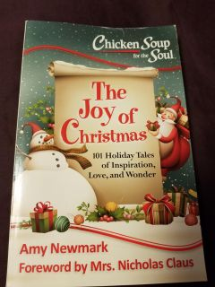The Joy of Christmas Chicken soup for the soul