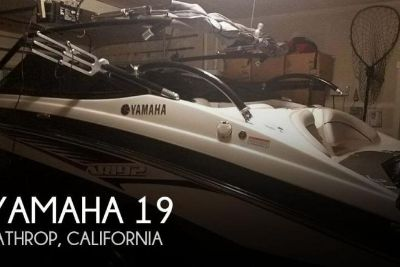 2014 Yamaha 19