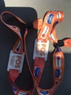 2 front of stage wristbands to see Steven Tyler at Rib Fest