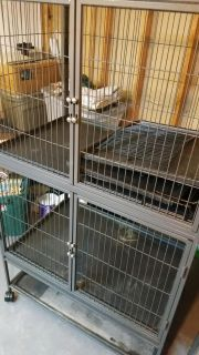 Double ferret nation cage like new