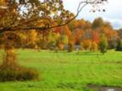 Land for Sale by owner in Mexico, NY