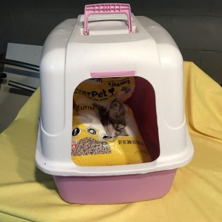 Large cat litter box and 1/2 bag litter