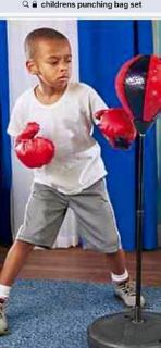 CLEARANCE ***BRAND NEW***Kids Punching Bag Set***