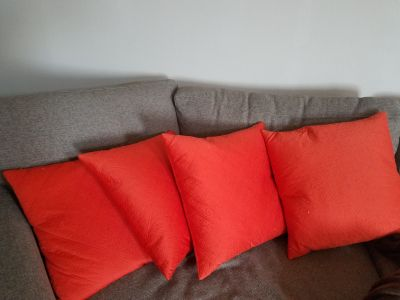 2 Orange curtain panels and 4 down pillows