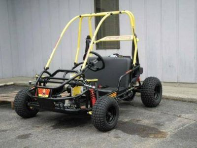 2017 American Sportworks Black Widow Other Go-Karts Forest View, IL