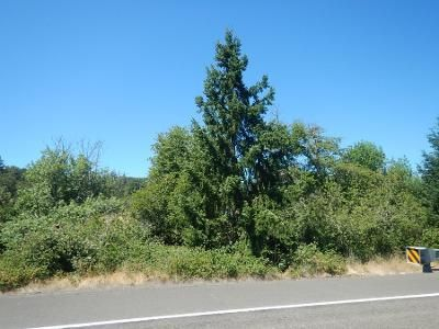 3 Bed 2.0 Bath Preforeclosure Property in Eagle Point, OR 97524 - Highway 140