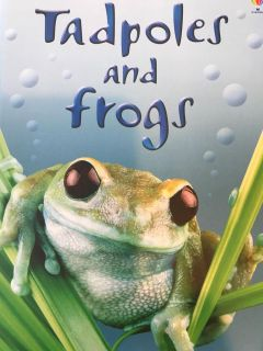 Book: Tadpoles and Frogs