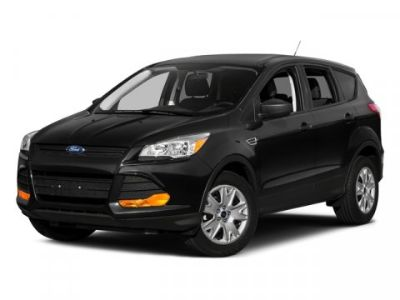 2016 Ford Escape SE (Magnetic)