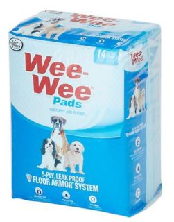 ISO Puppy Pads