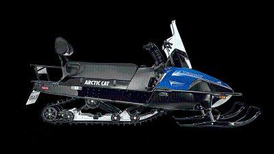 2019 Arctic Cat Bearcat XT Snowmobile Utility Snowmobiles Gaylord, MI