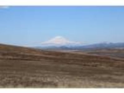 Goldendale Real Estate Lots & Land for Sale. $49,000 - Robert Wing of