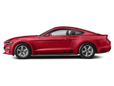 2019 Ford Mustang GT Premium Fastback (Race Red)