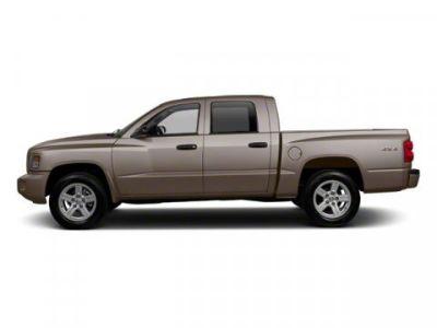2010 Dodge Dakota Big Horn (Austin Tan Pearl)