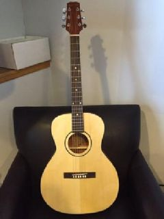 Beautiful BRAND NEW Acoustic/Electric Parlor Guitar