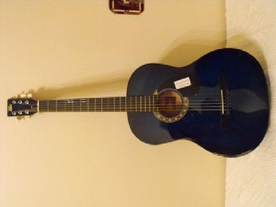 $40 Rogue Starter Acoustic Guitar Blue Burst