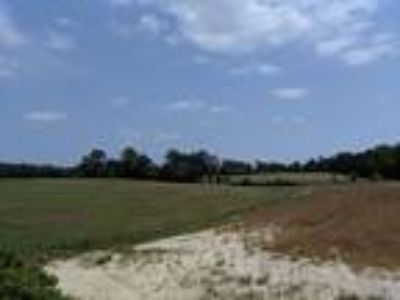 11.6 Acres in Moore County!