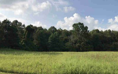 Lot 34 Finncannon Ellijay, Beautiful wooded lot with RIVER