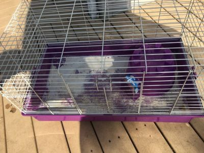 Guinea pig small animal cage