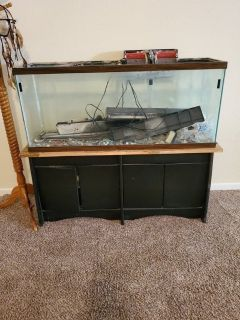 55 gallon fish aquarium