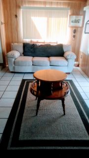 1 year old couch beautiful shape table and rug