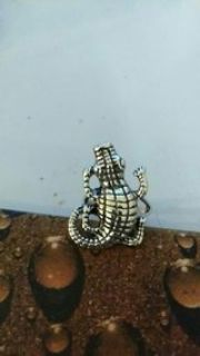 Stainless Alligator ring size 10