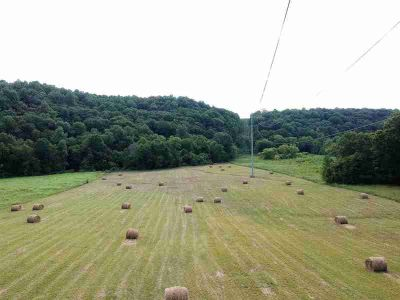 0 Leatherwood Creek Rd Pulaski, Beautiful Mini Farm just