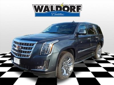2019 Cadillac Escalade Luxury (shadow metallic)