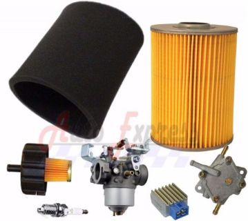 Buy YAMAHA 4 CYCLE G9 G11 GAS GOLF CART 91-94 TUNE UP KIT W/ CARBURETOR FUEL PUMP motorcycle in Lapeer, Michigan, United States, for US $177.10