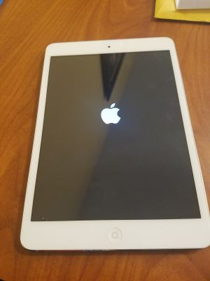 iPad mini - model A1432 - older model kingston/kirkland